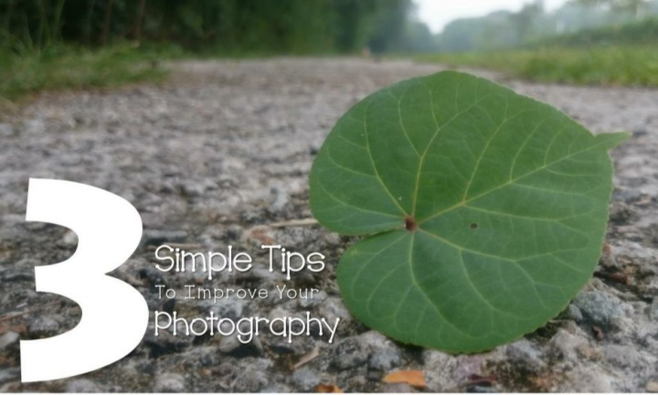 3 simple tips to improve your photography n.