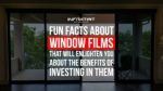 Fun Facts About Window Films That Will Enlighten You About The Benefits Of Investing In Them