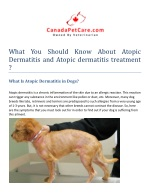 What You Should Know About Atopic Dermatitis and Atopic dermatitis treatment
