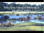 Status and Trends of Wetlands in the United States