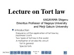 Lecture on Tort law