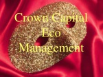 Crown Capital Eco Management - The Company