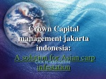 crown capital management jakarta indonesia: A solution for A