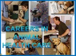 CAREERS IN ANIMAL HEALTH CARE