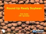 Round Up Ready Soybean John Gaska UW Agronomy