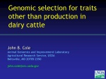 Genomic selection for traits other than production in dairy cattle